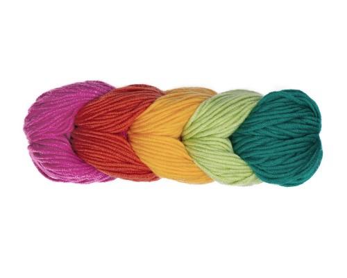 Caron X Pantone Yarn (5-Bulky, 100g)