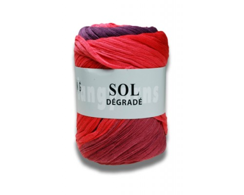 Lang Sol Degrade ( 4-Medium ,100g )